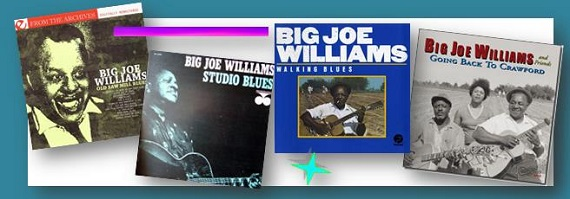 blues big joe williams